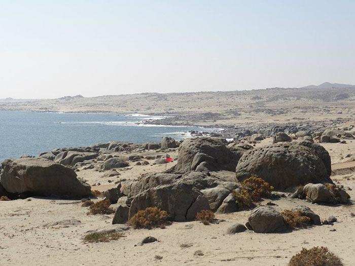Playa-Cisne