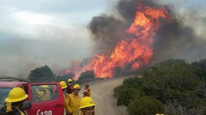 IncendioLevicanbomberos